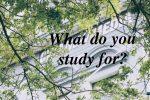勉強の意義を間違えてる人間は面白くない